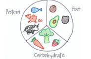 Единственное отличие от привычной модели сбалансированного питания: соотношение макронутриентов должно быть оптимизировано для вашего возраста!